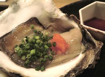 茨城産の岩牡蠣よ!